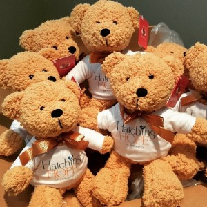 2-hatching-hope-teddies